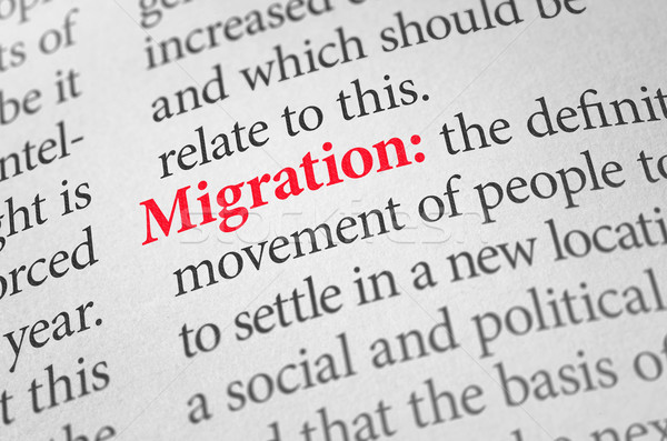 Definition of the word Migration in a dictionary Stock photo © Zerbor