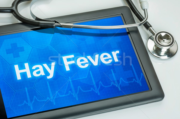 Tablet with the diagnosis hay fever on the display Stock photo © Zerbor