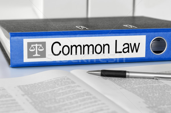 Blue folder with the label Common Law Stock photo © Zerbor