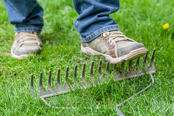 A man stepping accidentally on a rake Stock photo © Zerbor