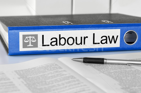 Blue folder with the label Labour Law Stock photo © Zerbor