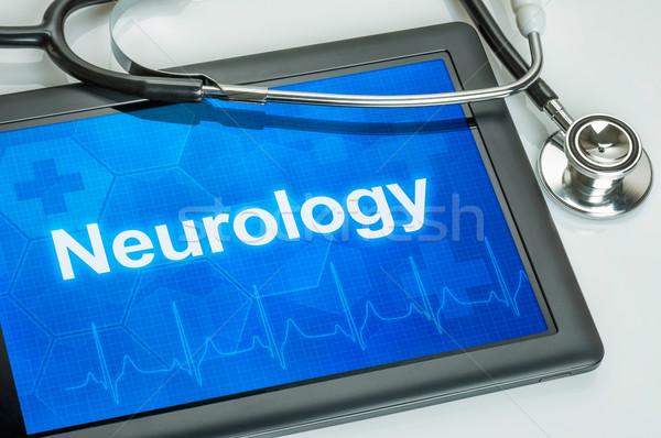 Tableta médicos especialidad neurología pantalla ordenador Foto stock © Zerbor