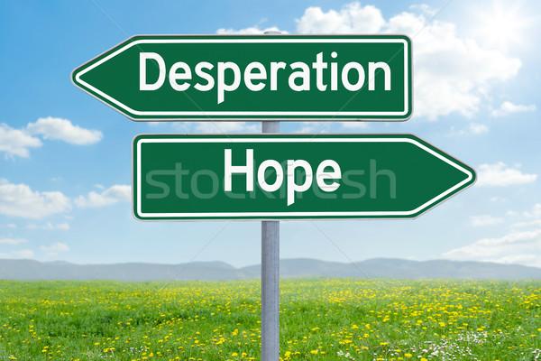 Due verde direzione segni disperazione speranza Foto d'archivio © Zerbor