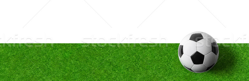 A Football field wtith a ball on a white background Stock photo © Zerbor
