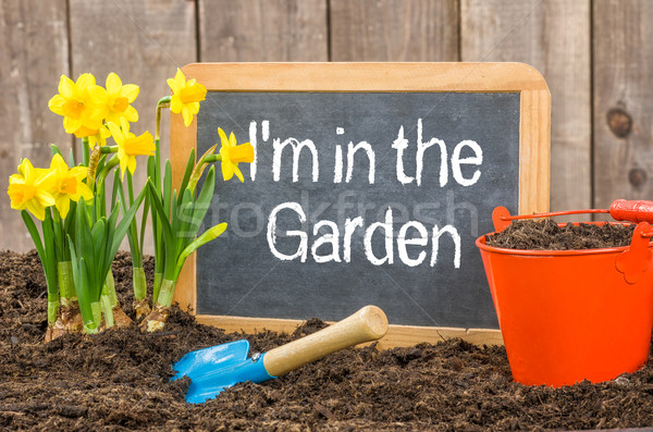 Blackboard in the flower bed with the text I am in the Garden Stock photo © Zerbor