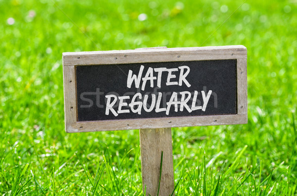 Sign on a green lawn - Water regularly Stock photo © Zerbor