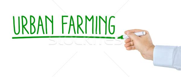 Stock fotó: Kéz · toll · ír · városi · gazdálkodás · egészség