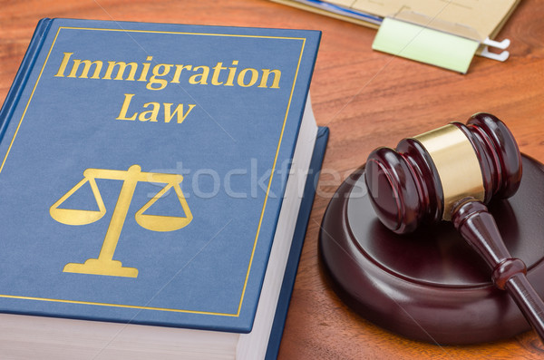 Stock photo: A law book with a gavel - Immigration law