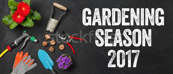 Garden tools on a dark background - Gardening season 2017 Stock photo © Zerbor