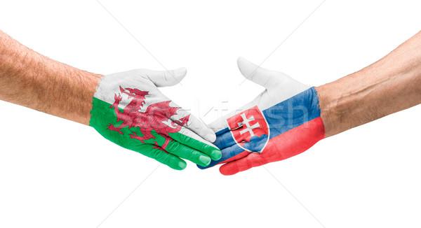 サッカー チーム ハンドシェーク ウェールズ スロバキア 手 ストックフォト © Zerbor