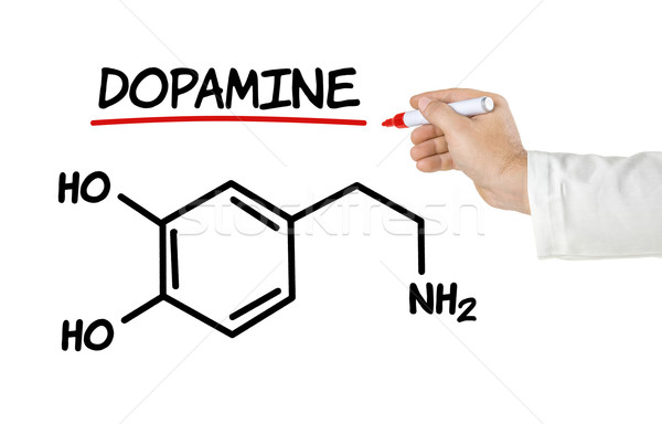 Chemical formula of dopamine on a white background Stock photo © Zerbor