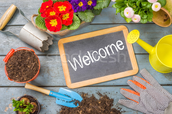 Blackboard on a plant table with garden tools - Welcome Stock photo © Zerbor