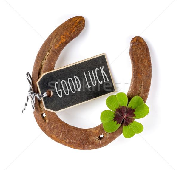 A horseshoe with a four-leafed clover Stock photo © Zerbor