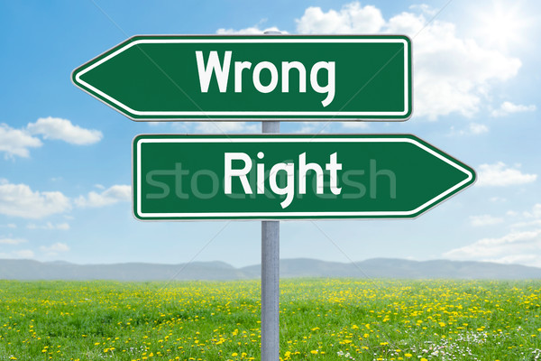 Two green direction signs - Wrong or Right Stock photo © Zerbor