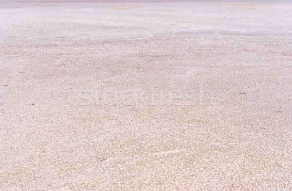 Száraz só tó fenék tele textúra Stock fotó © Zhukow