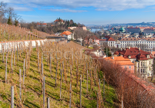 View of the historical districts of Prague Stock photo © Zhukow