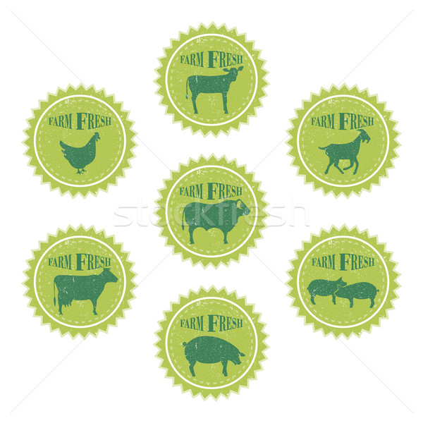 Farm animals labels templates of butchery shop Stock photo © Zhukow