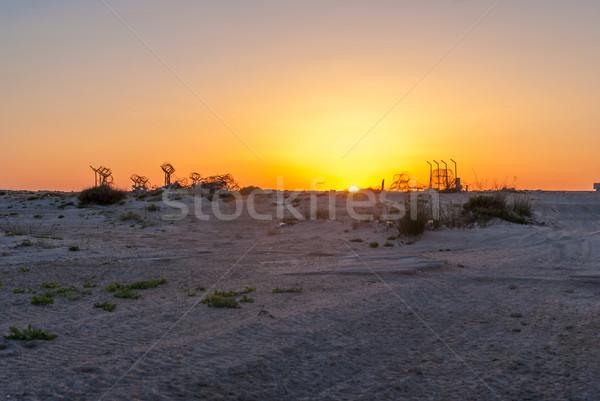 Drutu kolczastego pustyni wygaśnięcia krajobraz przestrzeni kolor Zdjęcia stock © Zhukow