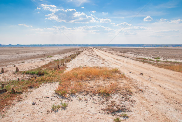 Dried salt lake shore Stock photo © Zhukow