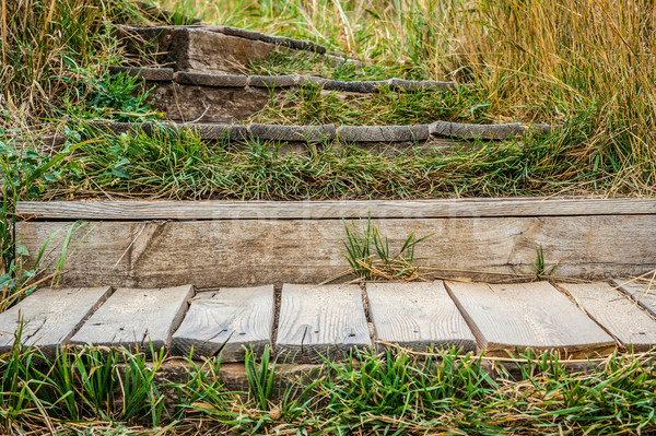 old wooden staircase overgrown with grass Stock photo © Zhukow