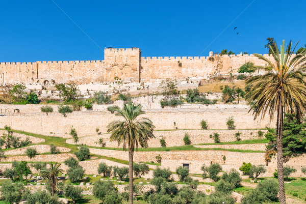 Golden gates of Jerusalem on the east wall of the old town Stock photo © Zhukow