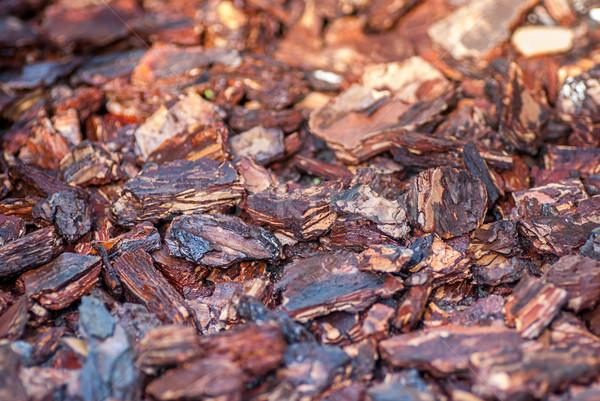 соснового Кора слой используемый садоводства текстуры Сток-фото © Zhukow
