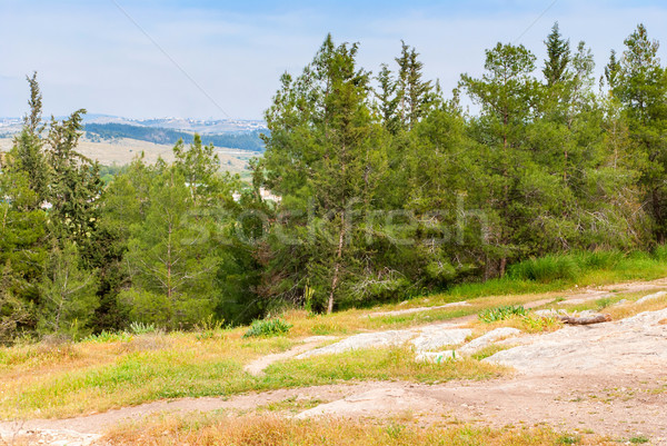 View on biblical landscape Hadid. Stock photo © Zhukow