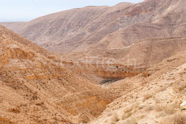砂漠 周りに オーソドックス 修道院 建物 自然 ストックフォト © Zhukow