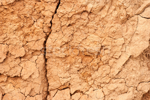 Stock photo: cracked clay ground into the dry season