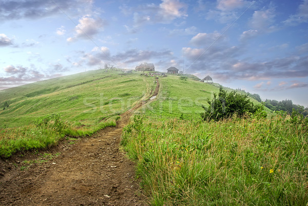 settlement in the mountains among the green pastures Stock photo © Zhukow