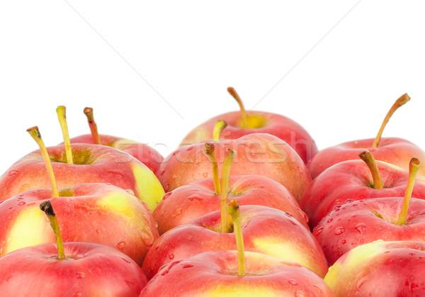 Fresco vermelho maçãs isolado branco Foto stock © Zhukow