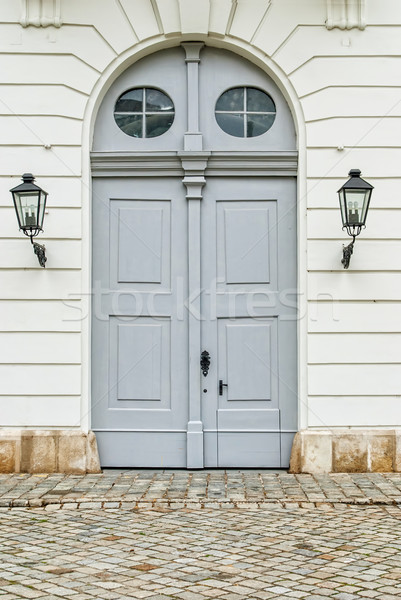 Vienna door. Vienna, Austria Stock photo © Zhukow
