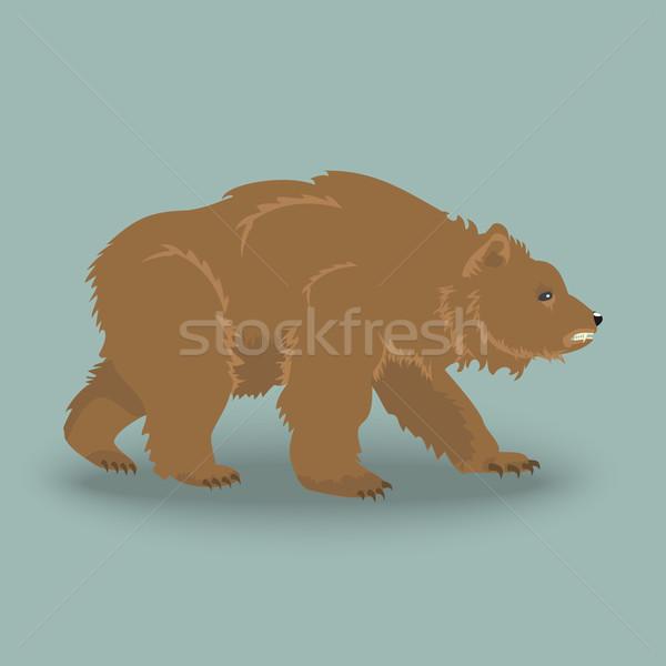 Kodiak angry bear  Stock photo © Zhukow