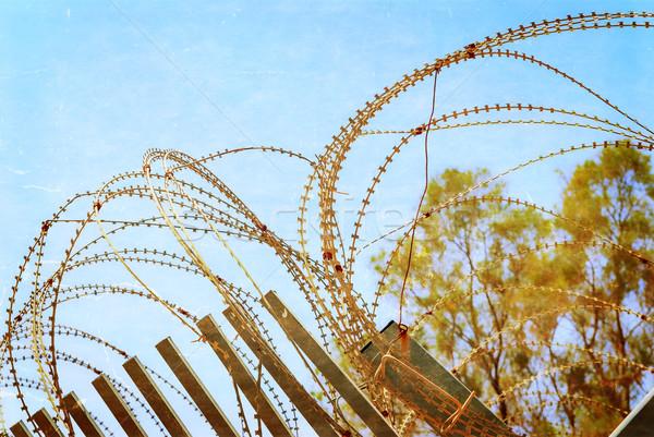 Stock fotó: Biztonság · szögesdrót · kerítés · kék · ég · fotó · mintázott