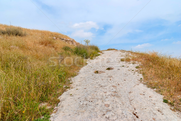 Beit Guvrin-Maresha National Park Stock photo © Zhukow