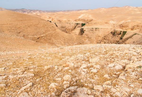 Wadi Qelt in Judean desert around St. George Orthodox Monastery Stock photo © Zhukow