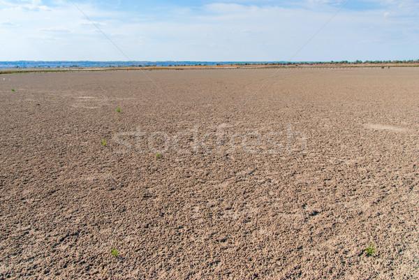 Aszalt só tó part tengerpart víz Stock fotó © Zhukow