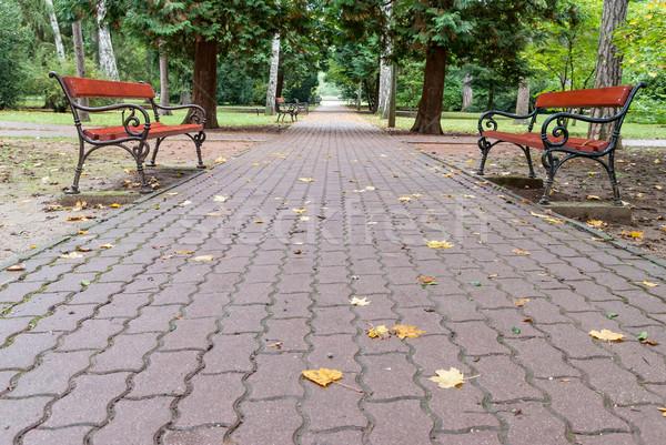 Benches in autumn park Stock photo © Zhukow