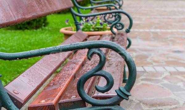 Elegante banco verão parque grama estrada Foto stock © Zhukow