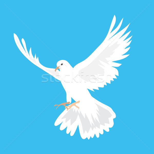 Beautiful white dove flying way up in a blue sky Stock photo © Zhukow