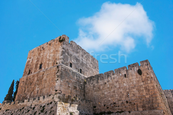 Defensive wall of the ancient holy Jerusalem Stock photo © Zhukow