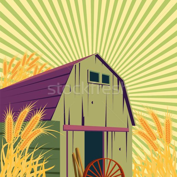 Gospodarstwa wiejskie sceny złoty pole pszenicy niebo Zdjęcia stock © Zhukow