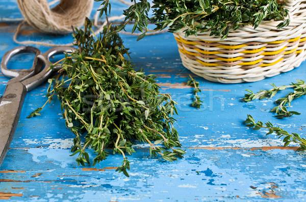 Köteg zöld öreg festett kék szín Stock fotó © zia_shusha