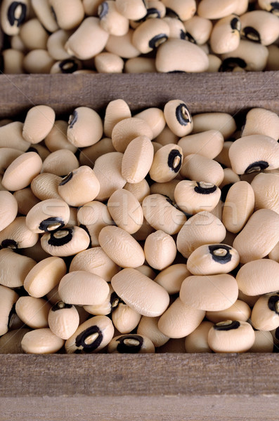 Beans 'Black Eye'  Stock photo © zia_shusha