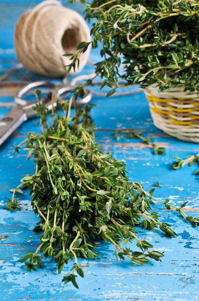 Thyme Stock photo © zia_shusha