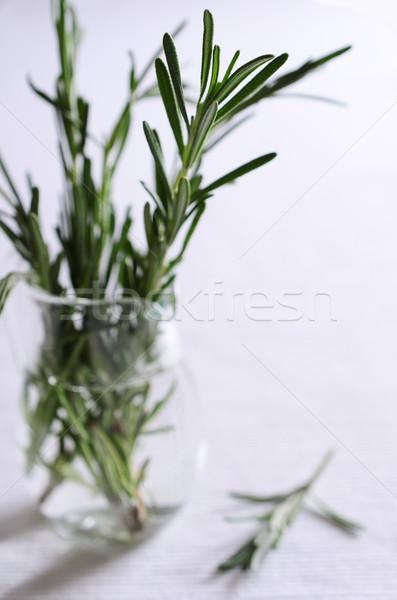 Rozmaring ágak zöld áll üveg bögre Stock fotó © zia_shusha
