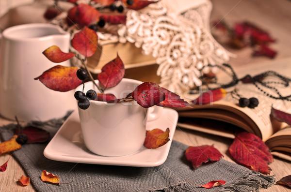 Autumn composition Stock photo © zia_shusha
