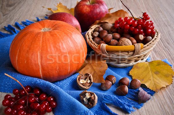 Pompoen oranje noten bessen drogen bladeren Stockfoto © zia_shusha