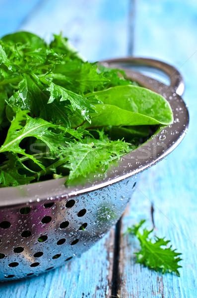 Vegyes saláta levelek friss zöld saláta Stock fotó © zia_shusha