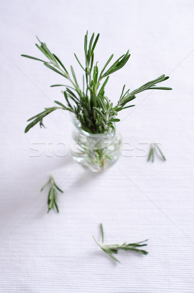 rosemary Stock photo © zia_shusha